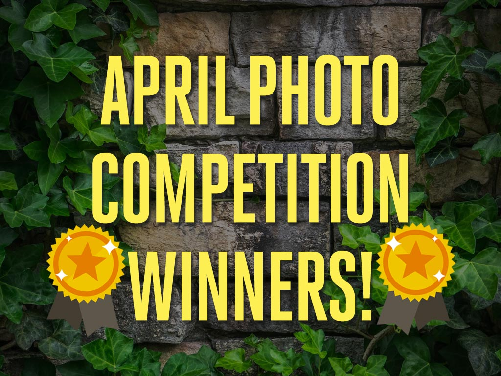 Announcement: Winners of the April Photography Competition!