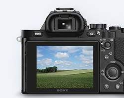 Sony PCK-LM16 - Protect your α7/α7R LCD screen