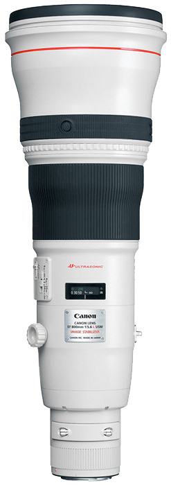 Canon EF 800mm f5.6L IS USM Lens